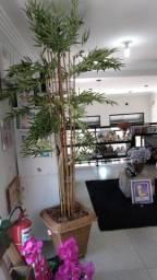 vaso + planta  artificial gigante ? 6 meses de uso ? Kaza Houseware