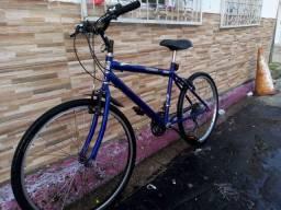 Bike 300