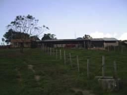 Sítio com 5,1 Alqueires, município de Porangaba/SP.