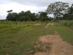 Título do anúncio: Área Rural na BR 319 km 55