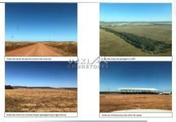 Área rural 24.910 ha -MT - dupla aptidão