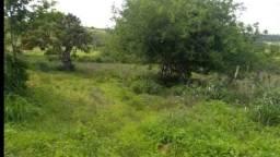 Fazenda com 110 hectares entre sao pedro e cajazeiras