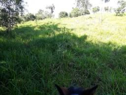 Fazenda de 23 Alqueires no município de Corumbaíba