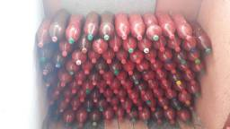 Vendo Pimenta biquinho por apenas 12 reais promoção