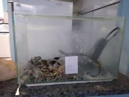 Aquário para peixes com bomba