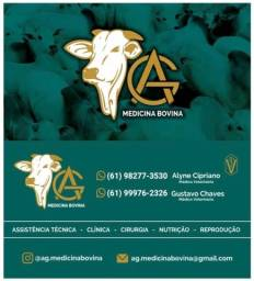 Atendimento veterinario em bovinos
