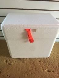 3 Caixas de Isopor Novas no Plastico Isoterm
