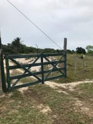 Sitio em Alcobaça - Bahia