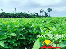 Fazenda para arrendamento ou vende se Santana do Araguaia sul do Para