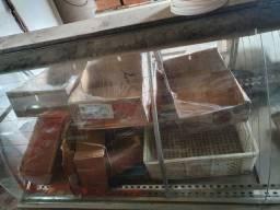 Vidro balcão açougue padaria