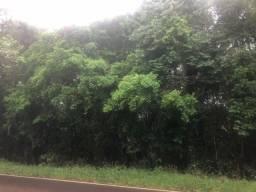 Título do anúncio: Vendo Chácara 1 hectare na Batingueira