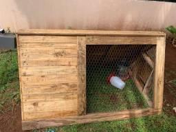Vende-se lindo galinheiro
