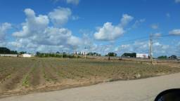 Arapiraca, Áreas Comerciais As Margens Da Al 220 E Al 110