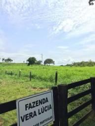 Vendo Fazenda na beira do Asfalto em Redenção