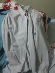 3 camisas social lote aproveitem única chance é agora 50 reais nunca usadas  2 delas d6454a282f413