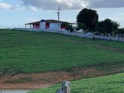 3.5 hectares em, Ibateguara !