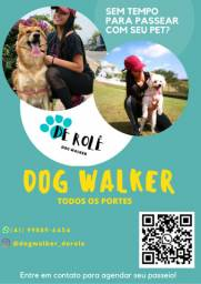 Dog Walker - Passeador de cães