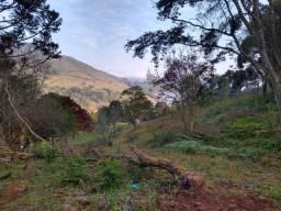 Arrendo área de terra com 16 hectares