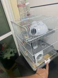 Título do anúncio: Hamster mais gaiola