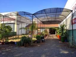 Título do anúncio: Instalações , vasos , plantas , flores , balcão, prateleira , viveiro de plantas