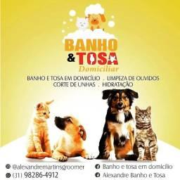 Título do anúncio: BANHO e TOSA Domiciliar