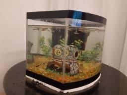 Lindo aquário completo Vidro da frente curvo