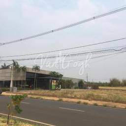 Lote para aluguel, Jardim Tarraf II - São José do Rio Preto/SP