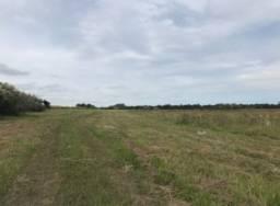 Belíssima área de 150 ha em São Pedro do Sul