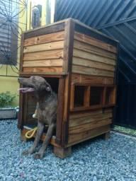 Casinha para cachorro de madeira