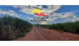 Vende-se sítio de 9 alqueires próximo a Paranapuã , atualmente arrendado para a