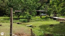 Título do anúncio: Linda chácara 3 hectares a venda interior Rolante...