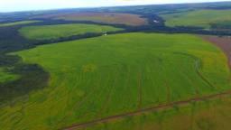 Fazenda 510Ha - Primavera do Leste - Agricultura