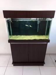 Aquario completo 161 Lt