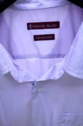 Camisa Dudalina plus size
