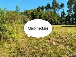 Meio hectare para lazer ou moradia, Fazenda fialho!