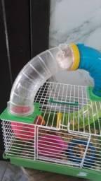 Vendo gaiola para Hamister