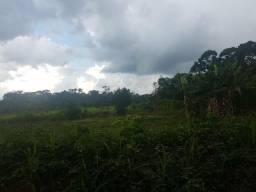 Chácara de 2 hectares ( preço negociável )