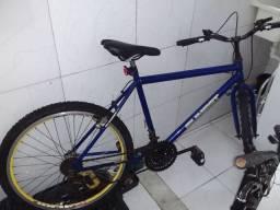 Bike 21v