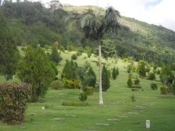 Jazigo no Parque da Colina - Pendotiba - Niterói