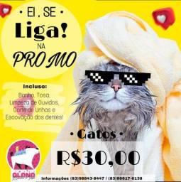 Banho e Tosa  R$30,00