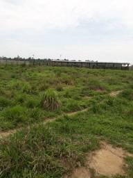Título do anúncio: Vendo fazenda 200 alqueires 145 formado de pasto 8 repartição