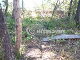 Terreno à venda em Serrano, Belo horizonte cod:589818