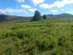 Vendo fazenda 90,06 hà na Região de Lavras MG (Ingaí)