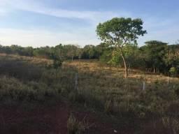 Fazenda em Mato Grosso 300 Hectares Pecuária terra muito boa