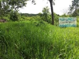 Fazenda com 362 Hectares Próximo da BR 070
