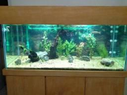Vendo ou troco aquário 300 litros completo
