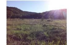 Ocasião,1590 Hectares,1000 hectares Pasto sujo Santo Antônio/MT