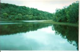 Fazenda Com Nascentes, 800 m de rio e Mata Atlântica Preserevada