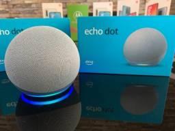 Echo Dot 4 Alexa Nova