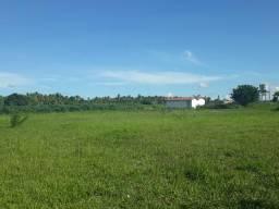 Granja com 4 hectares com casa, poço tubular, irrigação, cercada
